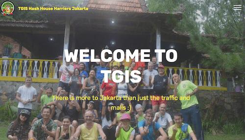 TGISの画像
