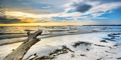 ロモドンビーチの画像