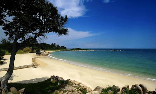 ビンタン諸島の画像